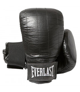 Everlast Slaghandskar Boston par